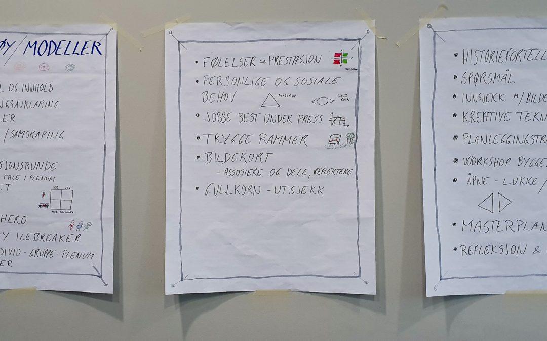 IMDi satser på prosessledelse